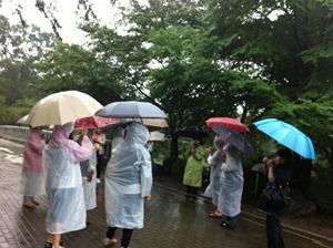 숲 해설가분이 나무에 대해 설명하는 것을 듣고 있다. 모두 비옷을 입고 우산을 들고 있다.